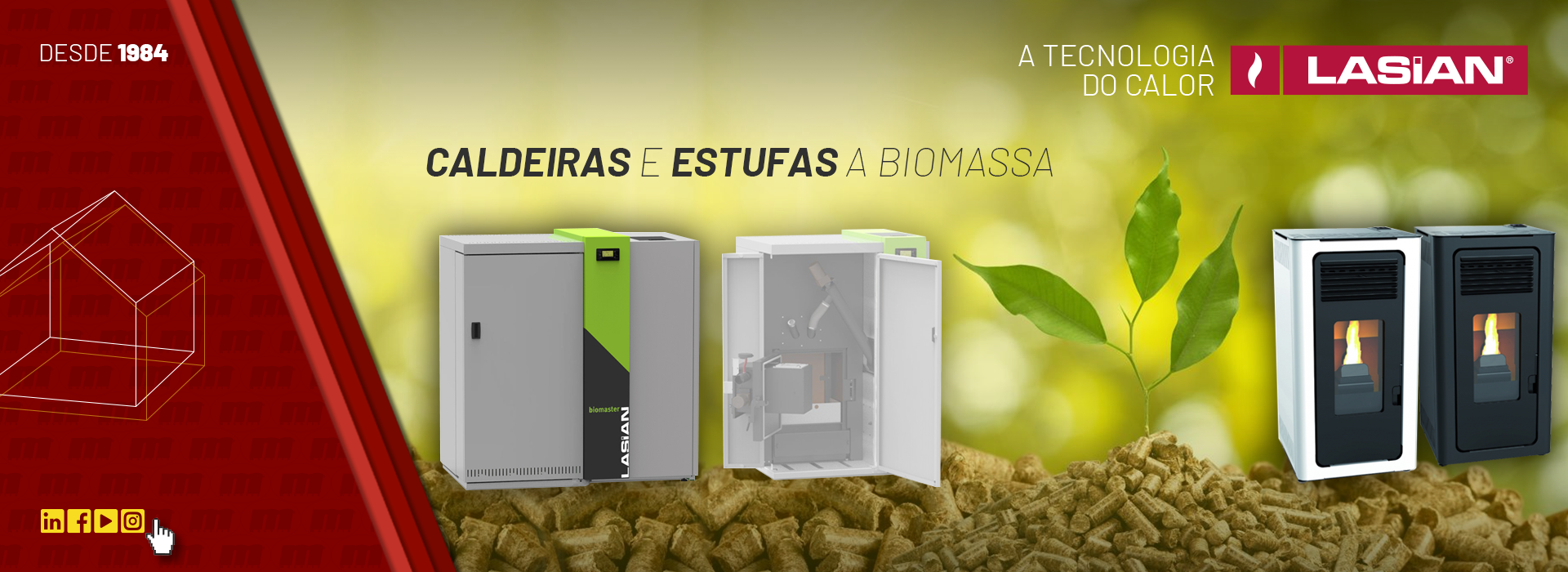 Caldeiras e Estufas Biomassa